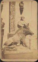 [Il porcellino marmoreo: galleria degli Uffizi: Firenze]